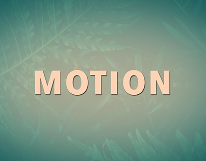 Jungle motion#AfterEffects