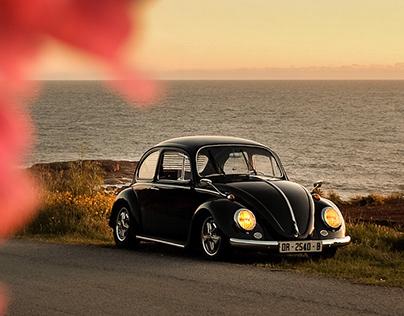 1964 VW bettle x Felipe Gonzo