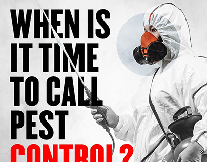 WHEN IS IT TIME TO CALL PEST CONTROL