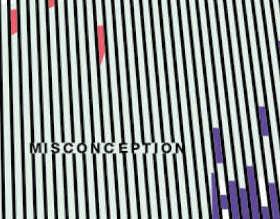 Visualizing Misconception