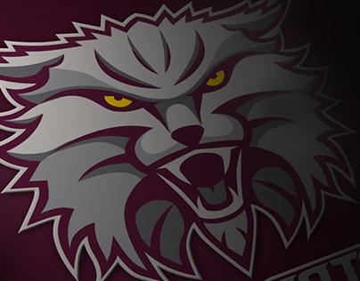 Bearcats Sports Team Identity Concept