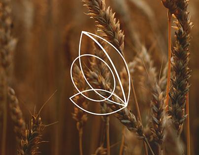 Intercâmbio AgroBrazil