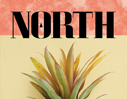 North Journal - Nº3