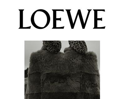 LOEWE: Brand Audit