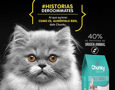 Campaña Chunky Gatos