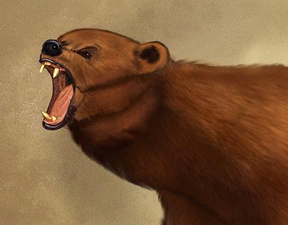 Brown Bear : Digital Painting