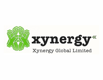 XYNERGY GLOBAL MARKETING FLYER