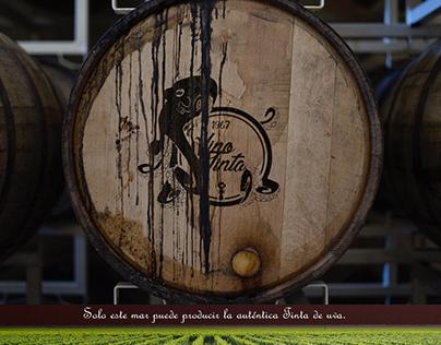 Vino Tinta - Branding