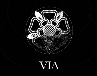 VIA logo design process