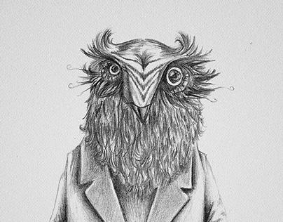 Mr. Búho / Mr. Owl