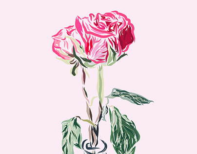 Rosie Rosa illustration
