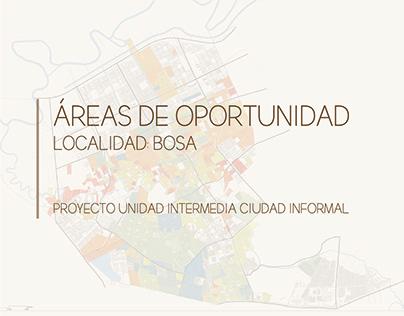 UI_Ciudad Informal_Áreas de oportunidad_202010