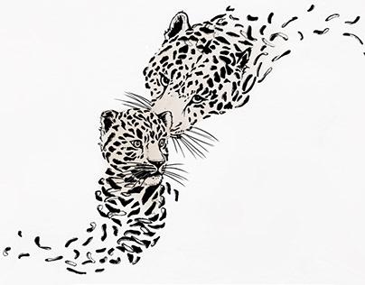 Endangered Animals series: Amur leopard