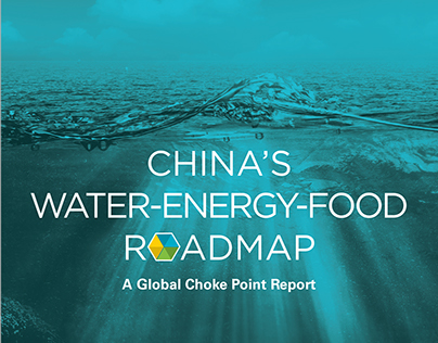 China Environmental Forum Energy Road Map