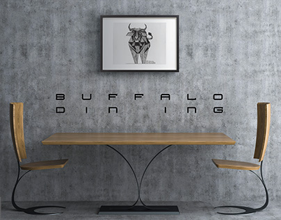 Buffalo Furniture Collection
