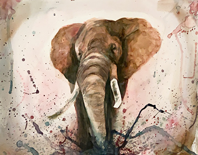 Watercolor Creative Process-Elephant