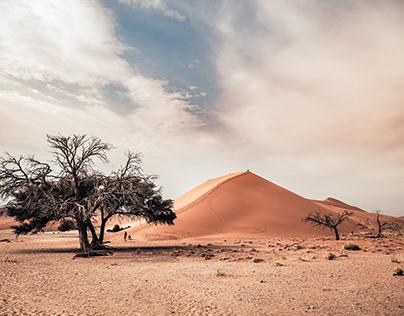 Landschaft & Reise