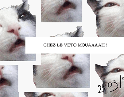 Chapotins
