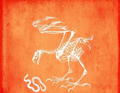 Skeleton Manor: A Morbid Anatomy #LateNightAlbumDesign