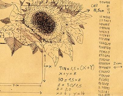 Ikebana Fibonacci Arrangement (2018)
