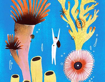 Coral Reef Dive