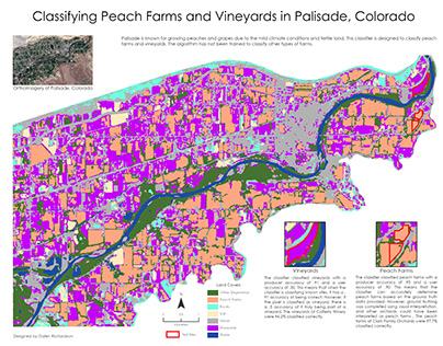 Peach Farms and Vineyards