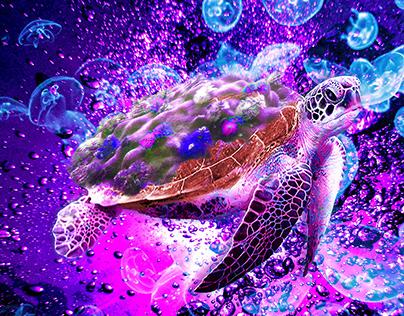 Tortue psychédélique avec sa carapace de coraux