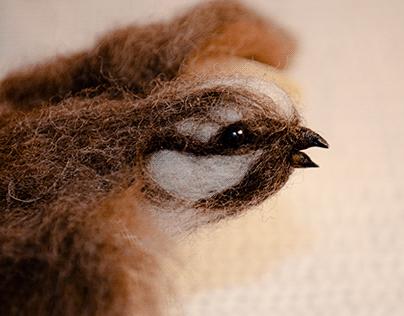 Libro Objeto: Gorrión | Book as Object: Sparrow