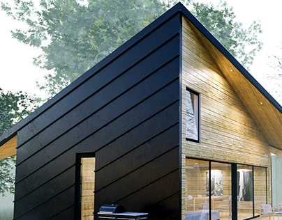 CABIN EXTERIOR VISUALIZATION