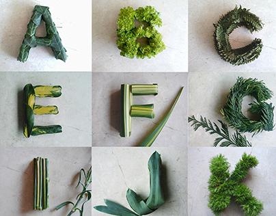Greentype #36daysoftype