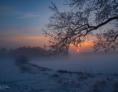 """""""Misty Morning Sunrise"""" (2021)"""