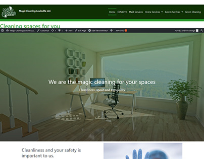 Sitio web Magic Cleaning