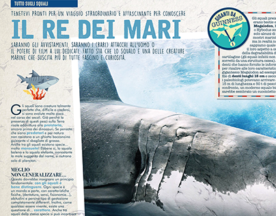 Predatori Marini - Sea Predators