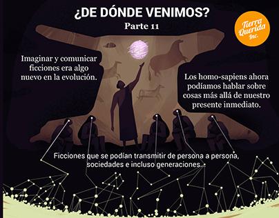 Infografías - Tierra Querida INC