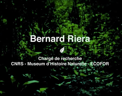Green Peace Campagne Forêt - Video Editing