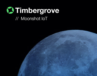 Timbergrove Moonshot IoT Business WebPage