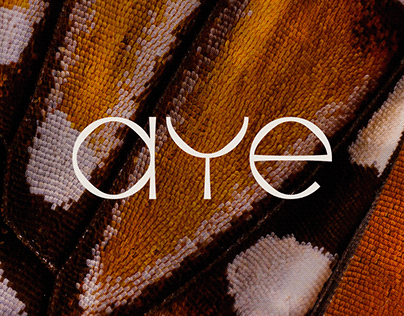 AYE | Identidade Visual