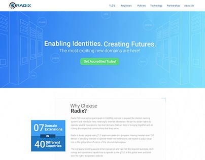 Radix Website Design Work