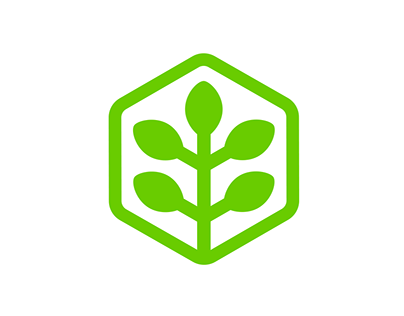 52dereva | arbor company | identity branding