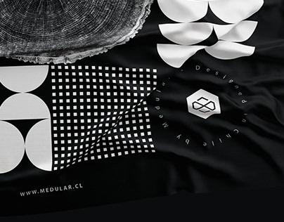 M E D U L A R / Visual Identity Design