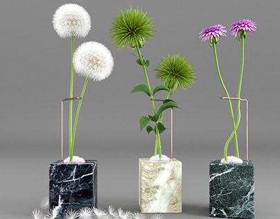 NEW PLANT MODEL