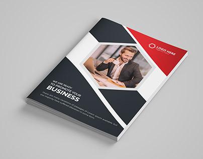 Professional brochure and copany profiledesign