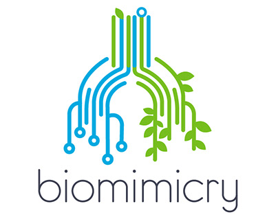 Biomimicry - Motion Design Piece