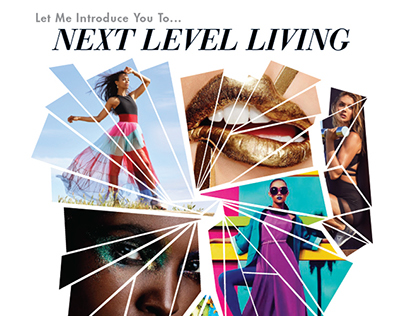 Direct Mail- Next Level Living: Campaign