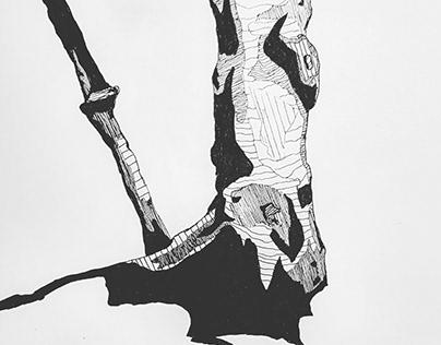MA Initial Drawings Portfolio