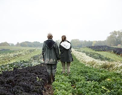 Kiselgaarden by fall