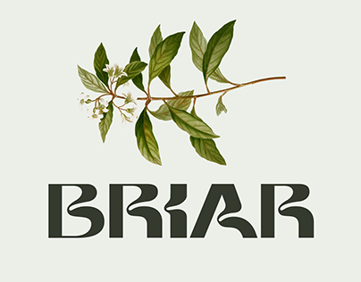 Briar - Display Font