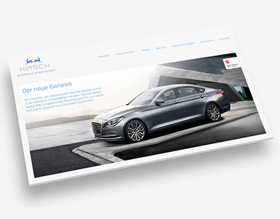 Layout Website dealership hirsch, Mega-Light Poster