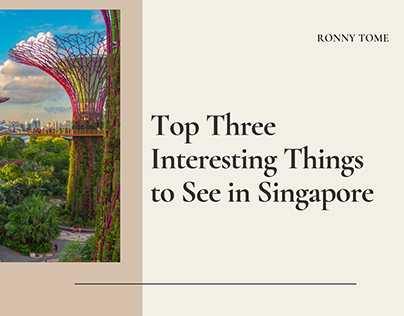 Top 3 Interesting Things to See in Singapore