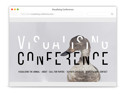Visualising Conference - Website and Branding
